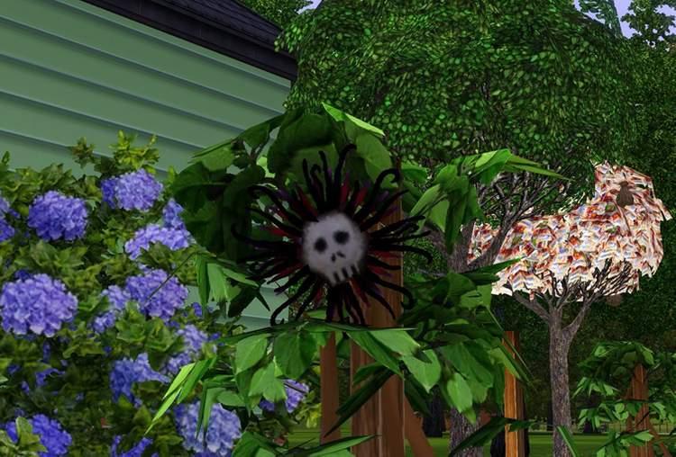 Flor da Morte