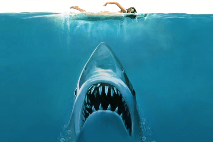 Tubarão (Selachofobia)