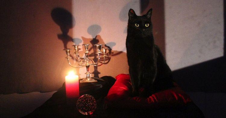 O Mundo Sombrio De Sabrina Horror Satanismo E Humor